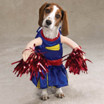 pet3_cheerleader